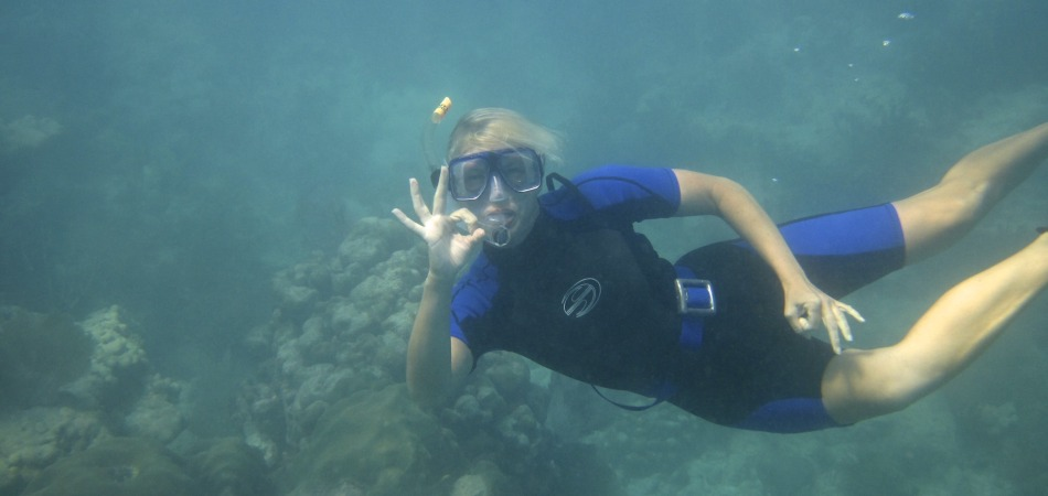 reef snorkel Allison