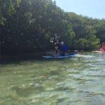 family paddleboarding