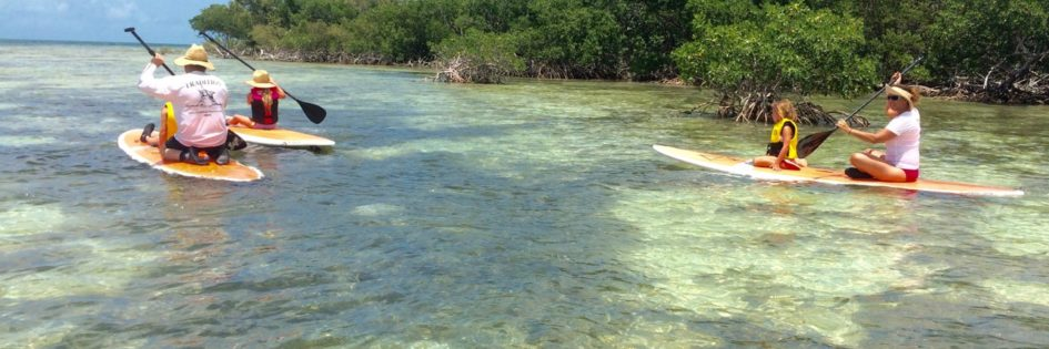 family paddleboarding with Keys Boat Tours