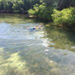keys boat tours Family Swim in the backcountry