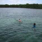 swim keys boat tours