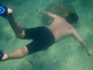 snorkeling Newfound Harbor
