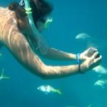 reef snorkel underwater photography
